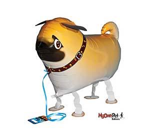 pug dog balloons