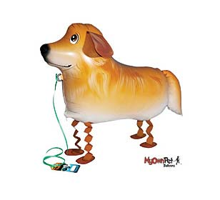 golden retriever dog balloons