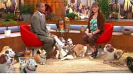 My Own Pet Balloons and Canines for Kids on WPIX